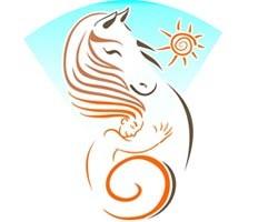 ERIKA'S HORSE FARM KOS